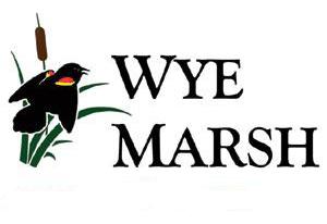 wye-marsh