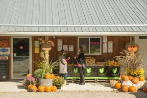 fall store 300x200 - In the know for September