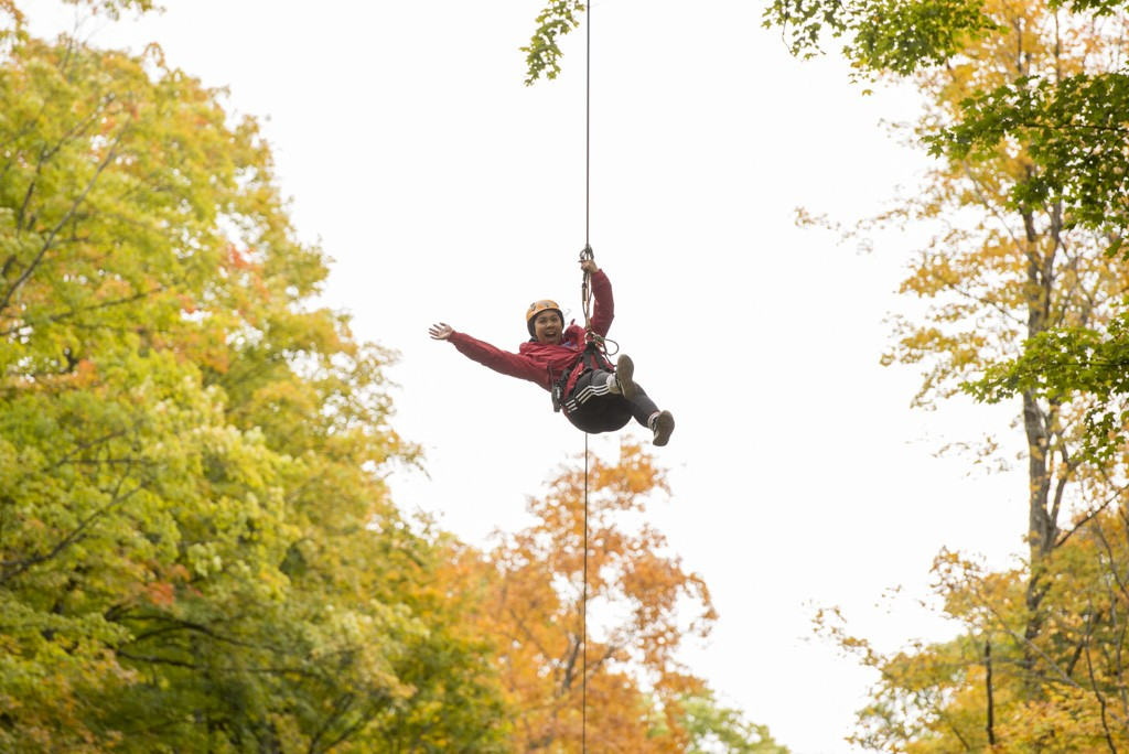 See Fall Colours From the Top of the Trees