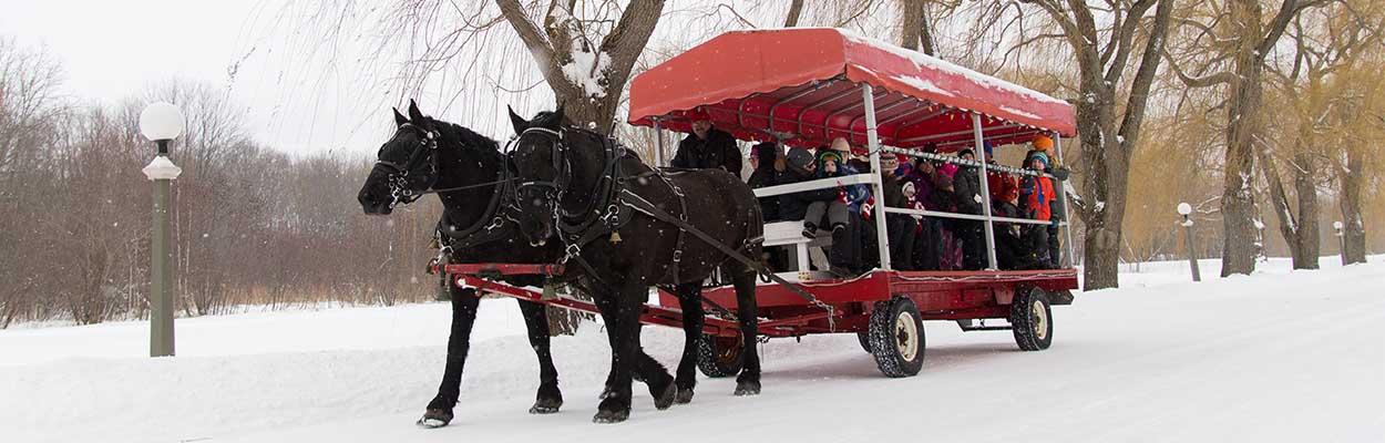 Horseback Wagon rides 1250x400 - Top 10 Outdoor Winter Activities
