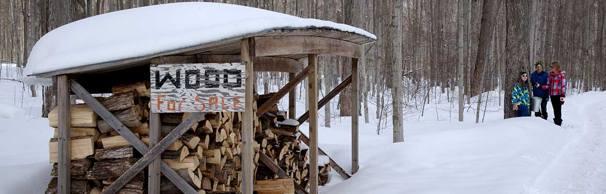 Shack with wood 1250x400 - Maple Tours and Winter Fun in Ontario's Lake Country