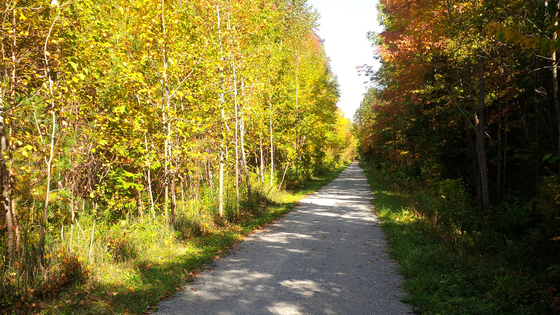 uhthoff Trail Fall - THE MOST INSTAGRAMMABLE LOCATIONS THIS FALL